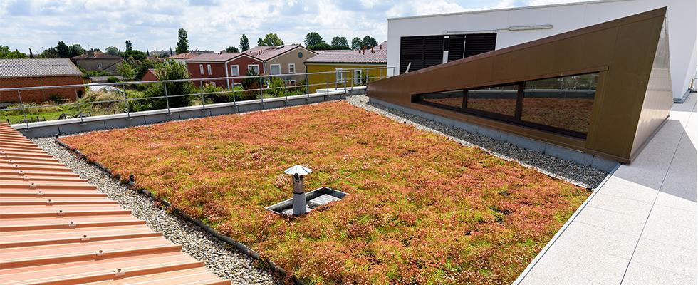 Les toitures végétalisées Sopranature® : un dossier complet