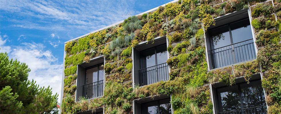 La végétalisation de murs et façades Vivagreen®